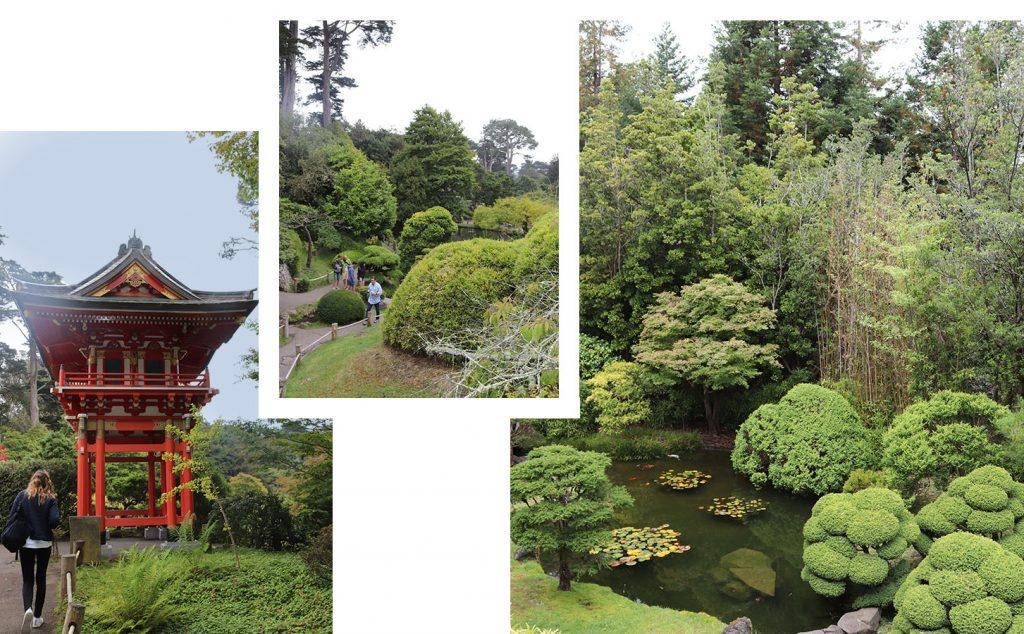 Japaneses tea garden